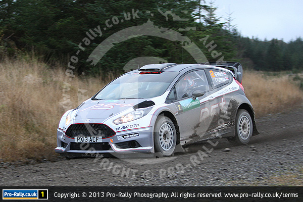 2013 Grizedale Stages Rally